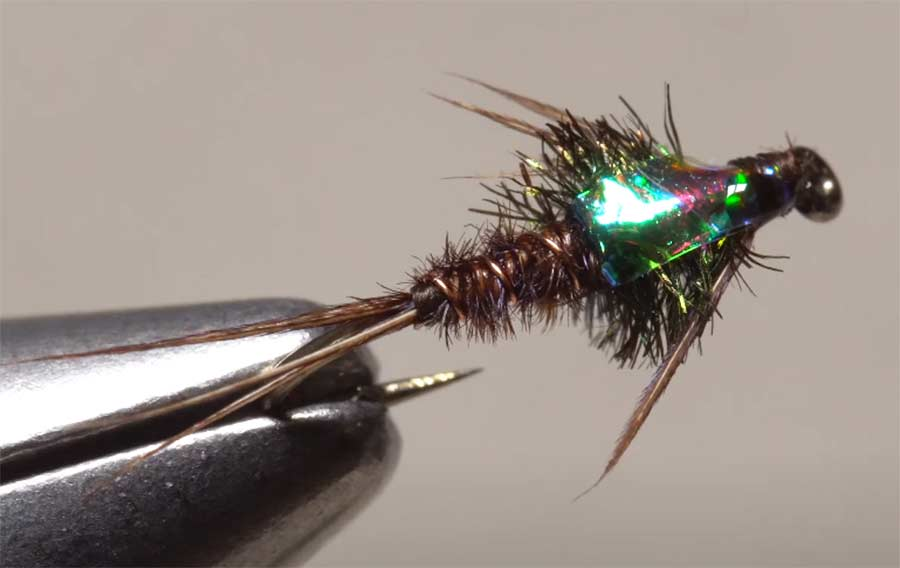 Video: How to Tie a Flashback Pheasant-Tail Nymph