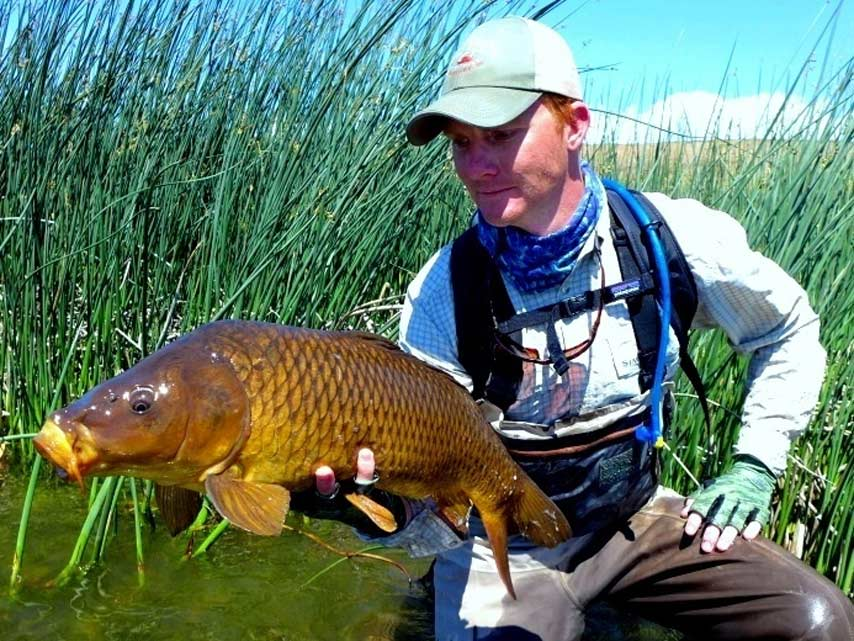 Podcast: Advanced Carp Fishing, with Dan Frasier