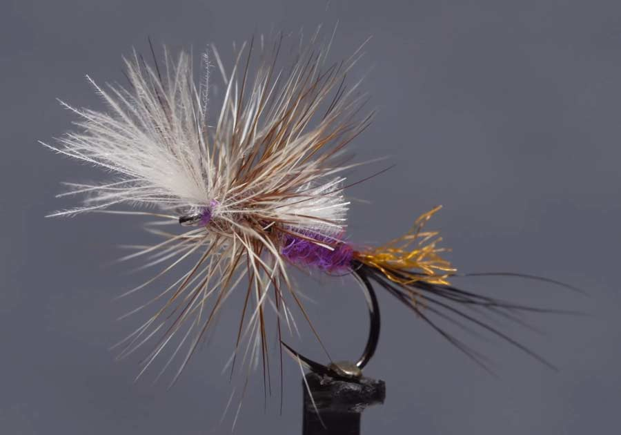 Video: How to Tie the Last Chance Purple Haze