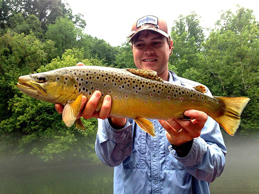 Podcast: Expert Tips on Small-Stream Fly Fishing in California and North Carolina