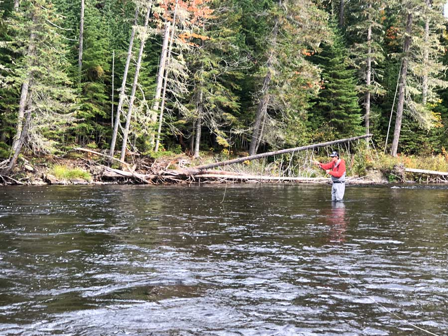 Pro Tips: 5 Common Fly-Fishing Mistakes and How to Avoid Them