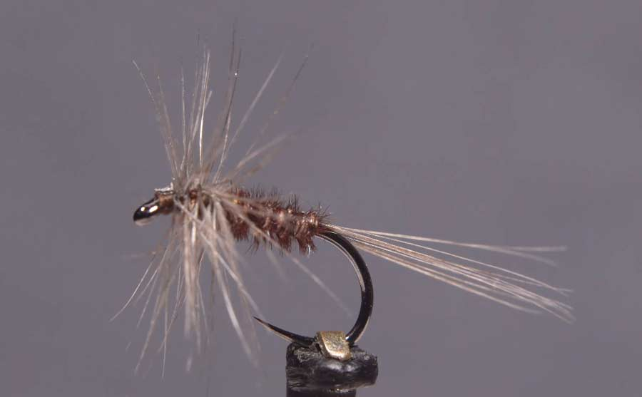 Video: How to Tie a Blue Quill Variant