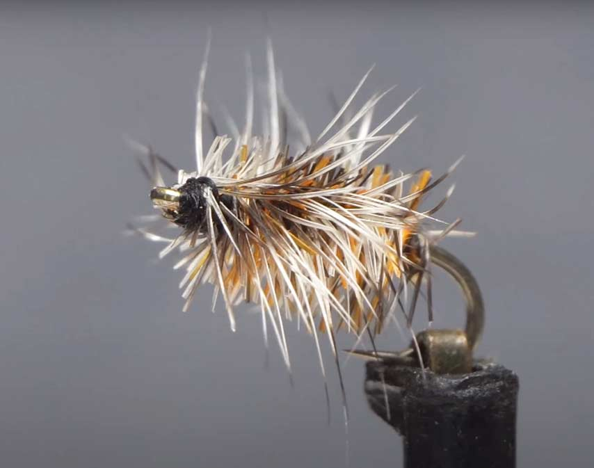 Video: How to Tie the Buzzball