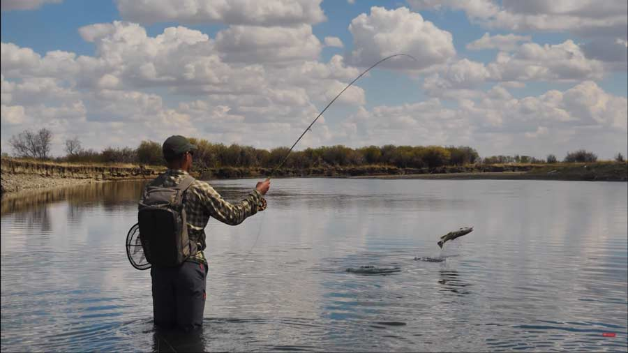 Video: How to Fish Flat Water Under a Bright Sun