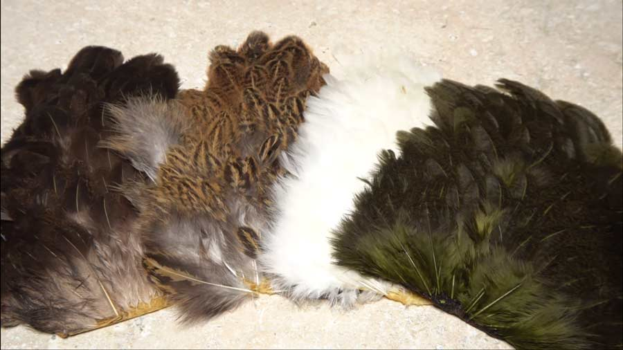 Video: How to Choose the Right Soft-Hackle Feather