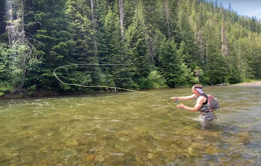 Video: Westslope Cutthroats on Idaho's St. Joe